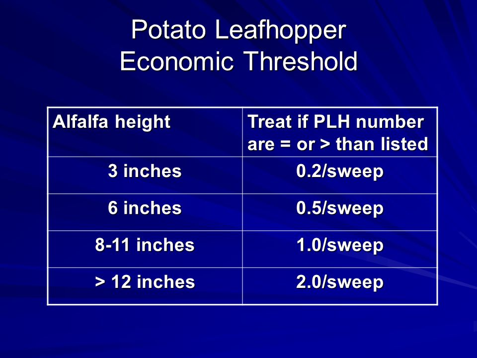 Potato Leafhopper Economic Threshold Alfalfa height Treat if PLH number are = or > than listed 3 inches 0.2/sweep 6 inches 0.5/sweep 8-11 inches 1.0/sweep > 12 inches 2.0/sweep