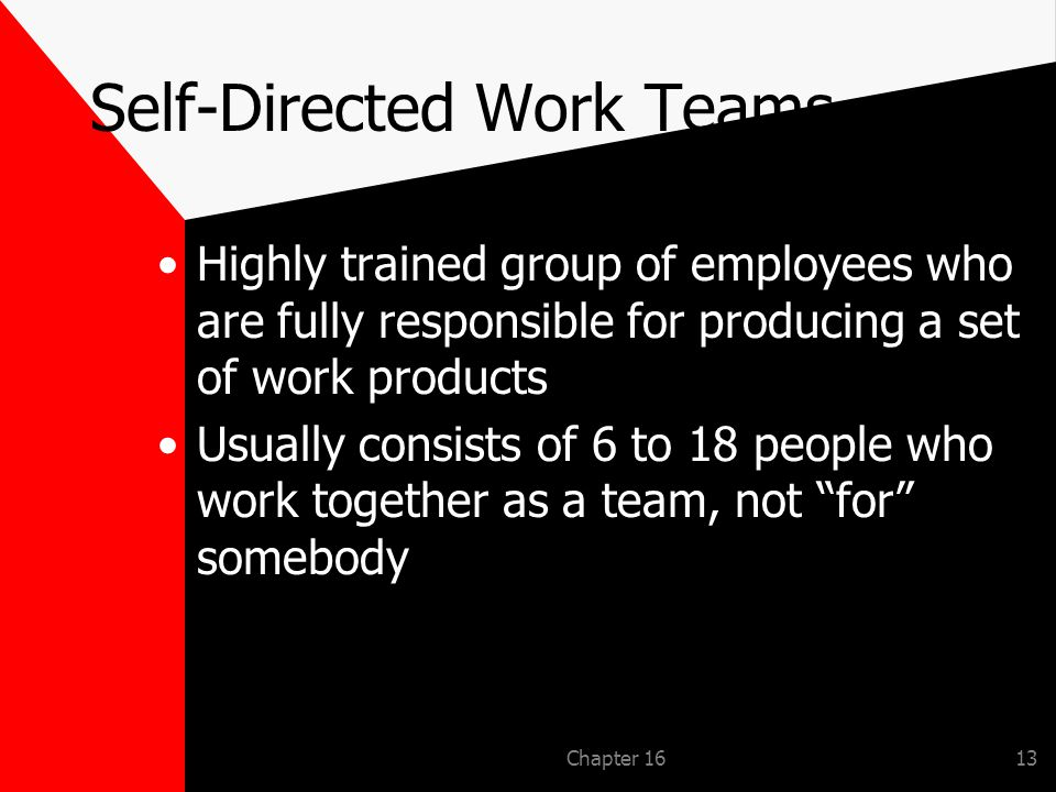 Chapter 1613 Self-Directed Work Teams Highly trained group of employees who are fully responsible for producing a set of work products Usually consists of 6 to 18 people who work together as a team, not for somebody