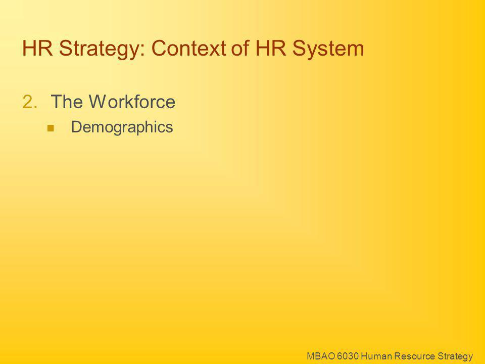MBAO 6030 Human Resource Strategy HR Strategy: Context of HR System 2.The Workforce Demographics