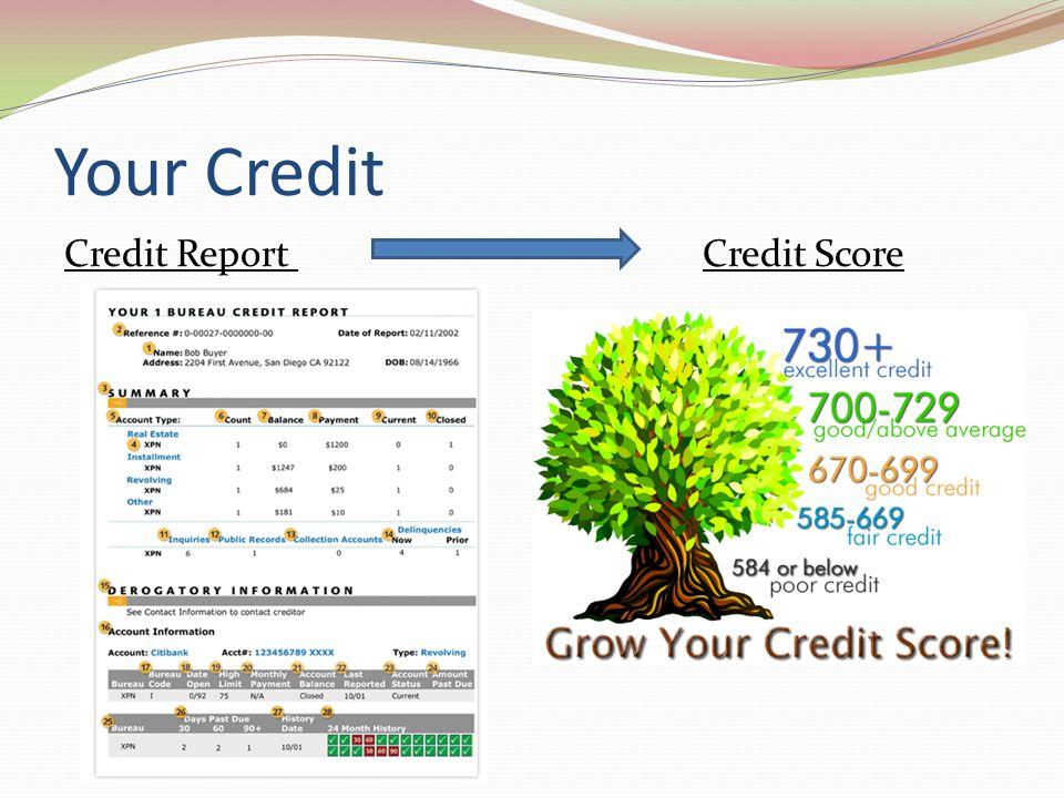 Your Credit Credit Report Credit Score