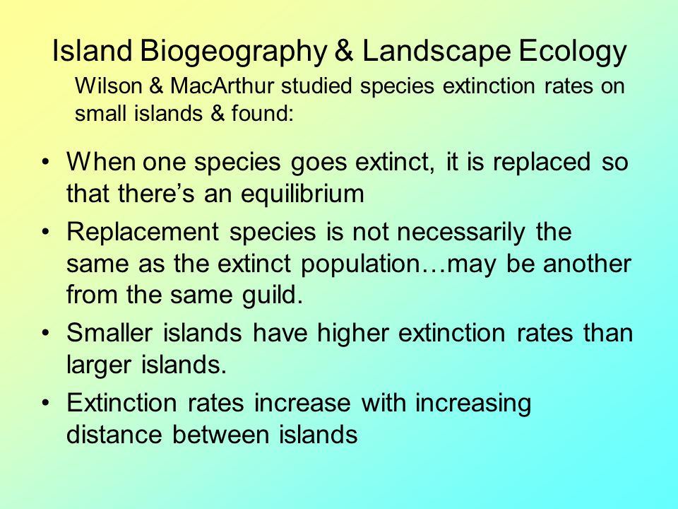 Island Biogeography & Landscape Ecology When one species goes extinct, it is replaced so that theres an equilibrium Replacement species is not necessa