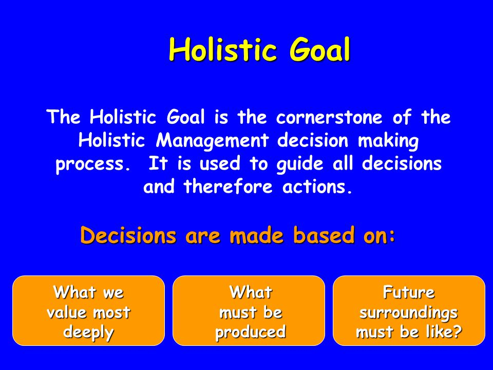 Holistic Goal Holistic Goal Decisions are made based on: What we value most deeply What must be produced Future surroundings must be like.