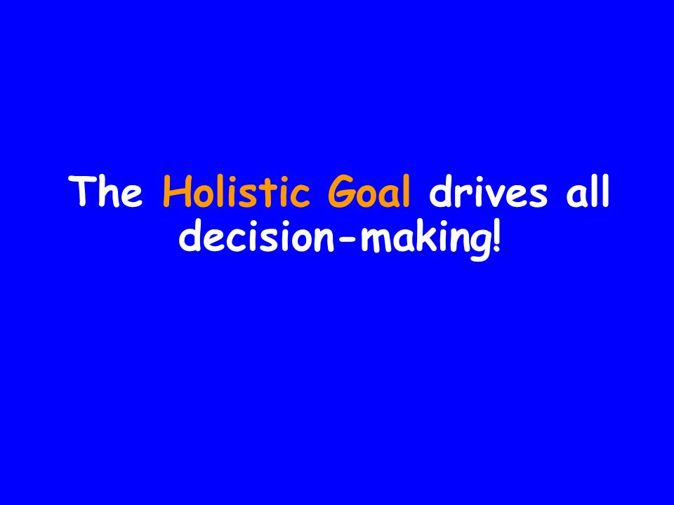 The Holistic Goal drives all decision-making!