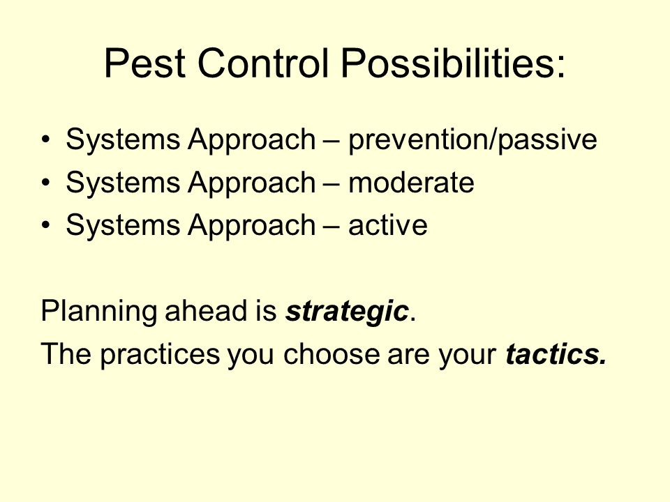 Pest Control Possibilities: Systems Approach – prevention/passive Systems Approach – moderate Systems Approach – active Planning ahead is strategic.