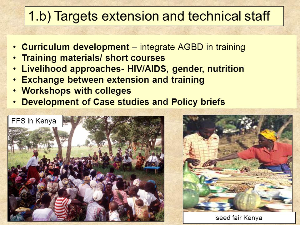 Curriculum development – integrate AGBD in training Training materials/ short courses Livelihood approaches- HIV/AIDS, gender, nutrition Exchange between extension and training Workshops with colleges Development of Case studies and Policy briefs 1.b) Targets extension and technical staff seed fair Kenya FFS in Kenya