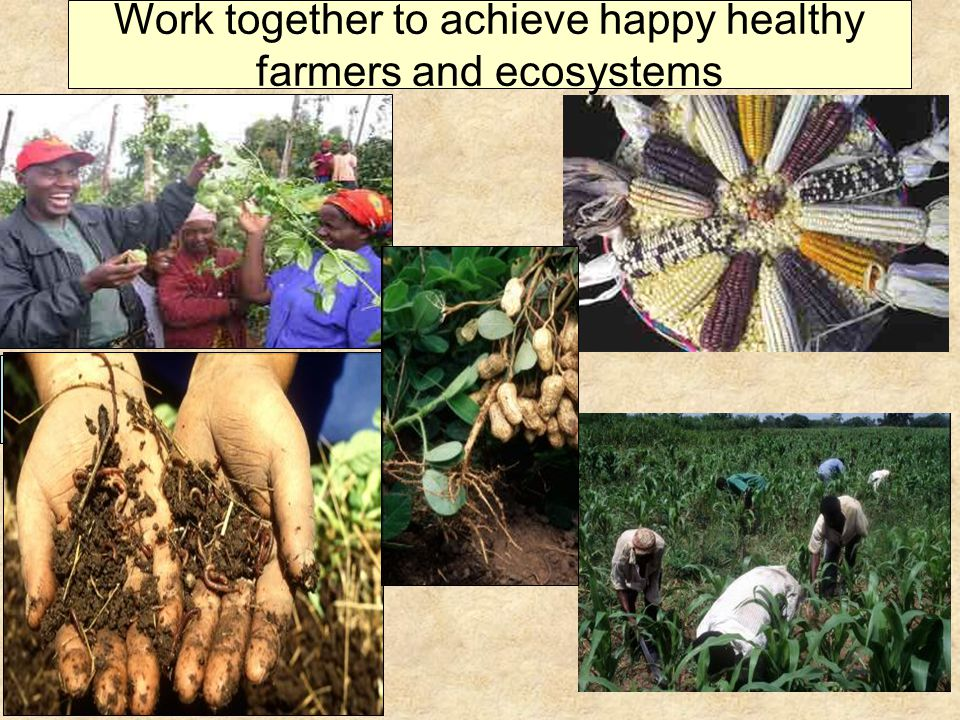 Work together to achieve happy healthy farmers and ecosystems Smallholders access market prices from rural info kiosks, c/o Pride africa, IDRC