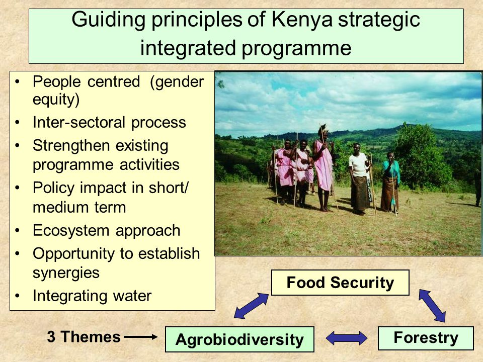 People centred (gender equity) Inter-sectoral process Strengthen existing programme activities Policy impact in short/ medium term Ecosystem approach Opportunity to establish synergies Integrating water Guiding principles of Kenya strategic integrated programme Agrobiodiversity Forestry Food Security 3 Themes