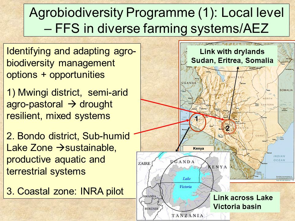 Agrobiodiversity Programme (1): Local level – FFS in diverse farming systems/AEZ 2 Identifying and adapting agro- biodiversity management options + opportunities 1) Mwingi district, semi-arid agro-pastoral drought resilient, mixed systems 2.