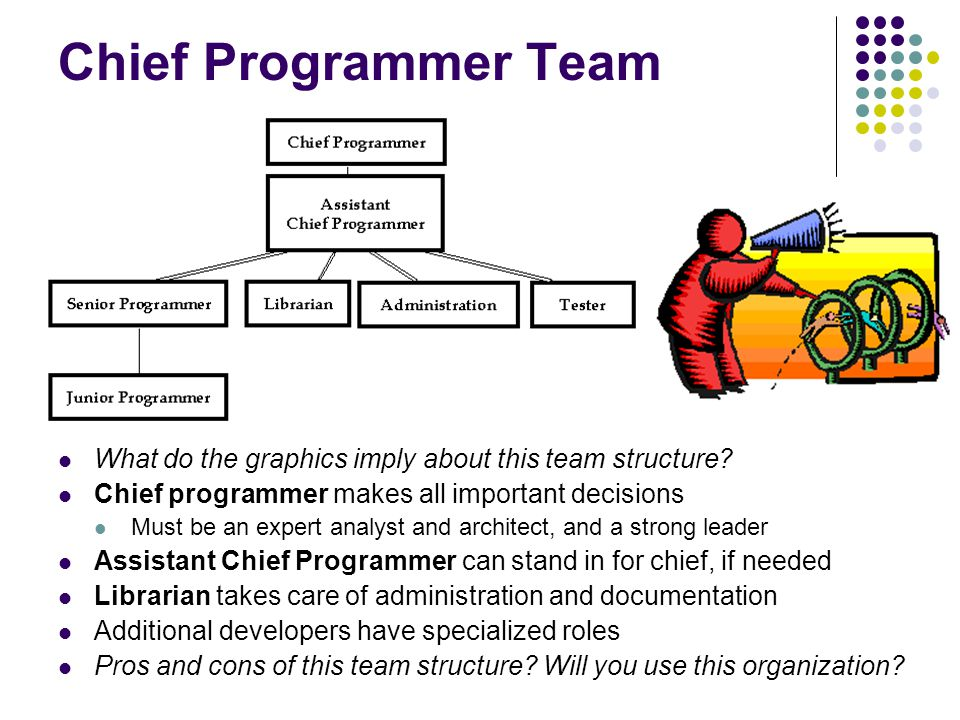 Chief Programmer Team What do the graphics imply about this team structure.
