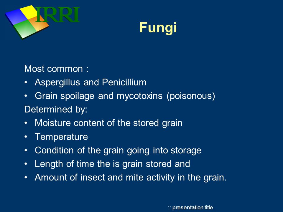 :: presentation title Fungi Most common : Aspergillus and Penicillium Grain spoilage and mycotoxins (poisonous) Determined by: Moisture content of the stored grain Temperature Condition of the grain going into storage Length of time the is grain stored and Amount of insect and mite activity in the grain.