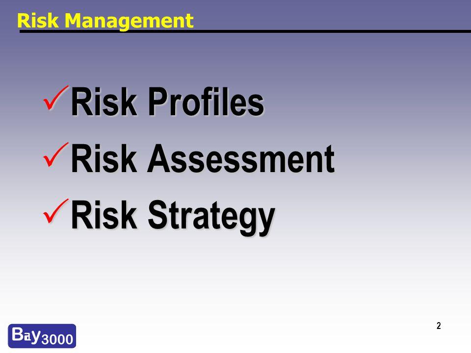 2 Risk Management Risk Profiles Risk Profiles Risk Assessment Risk Assessment Risk Strategy Risk Strategy