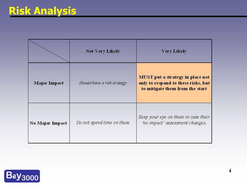 4 Risk Analysis