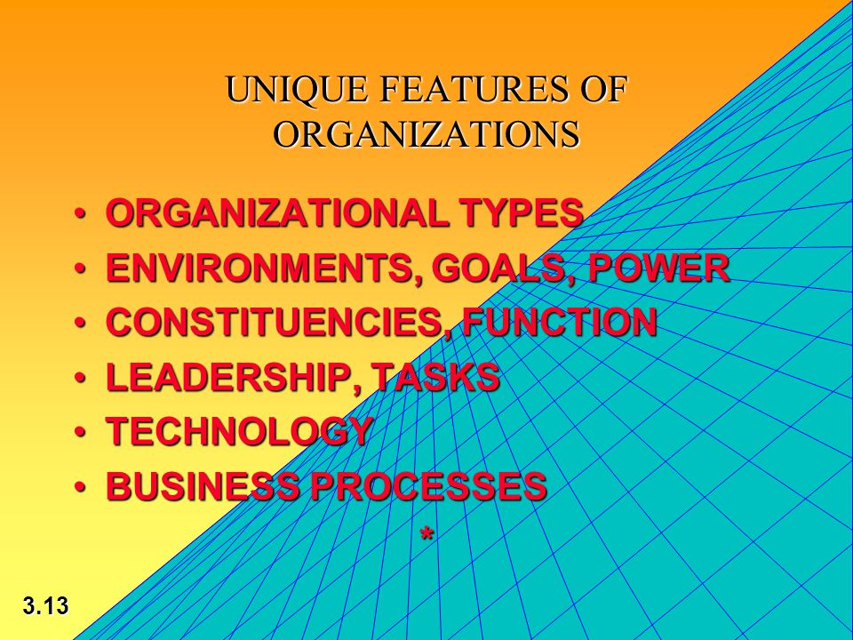 3.13 © 2002 by Prentice Hall UNIQUE FEATURES OF ORGANIZATIONS ORGANIZATIONAL TYPESORGANIZATIONAL TYPES ENVIRONMENTS, GOALS, POWERENVIRONMENTS, GOALS, POWER CONSTITUENCIES, FUNCTIONCONSTITUENCIES, FUNCTION LEADERSHIP, TASKSLEADERSHIP, TASKS TECHNOLOGYTECHNOLOGY BUSINESS PROCESSESBUSINESS PROCESSES*