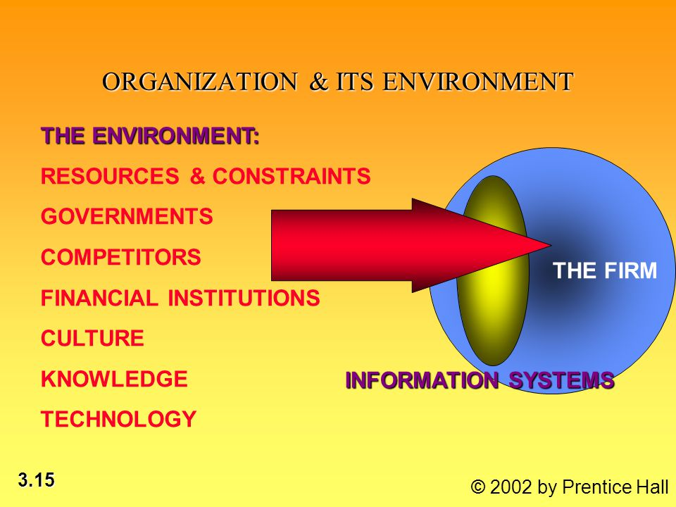 3.15 © 2002 by Prentice Hall ORGANIZATION & ITS ENVIRONMENT THE FIRM INFORMATION SYSTEMS THE ENVIRONMENT: RESOURCES & CONSTRAINTS GOVERNMENTS COMPETITORS FINANCIAL INSTITUTIONS CULTURE KNOWLEDGE TECHNOLOGY