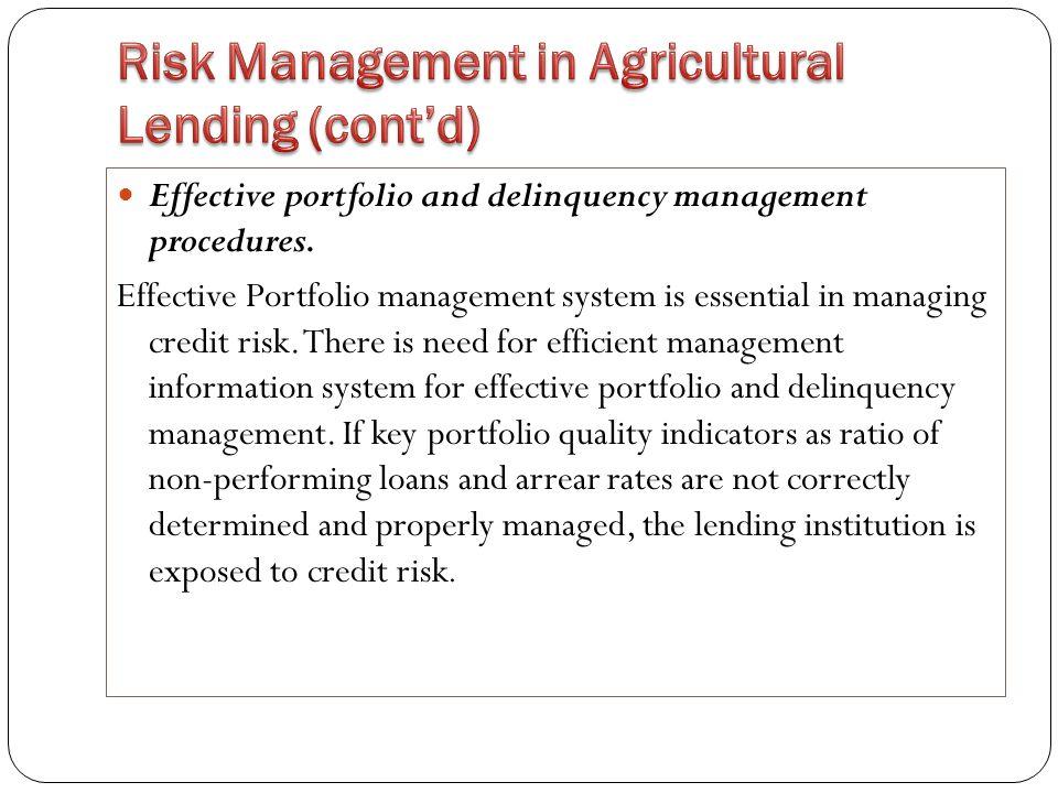 Effective portfolio and delinquency management procedures.