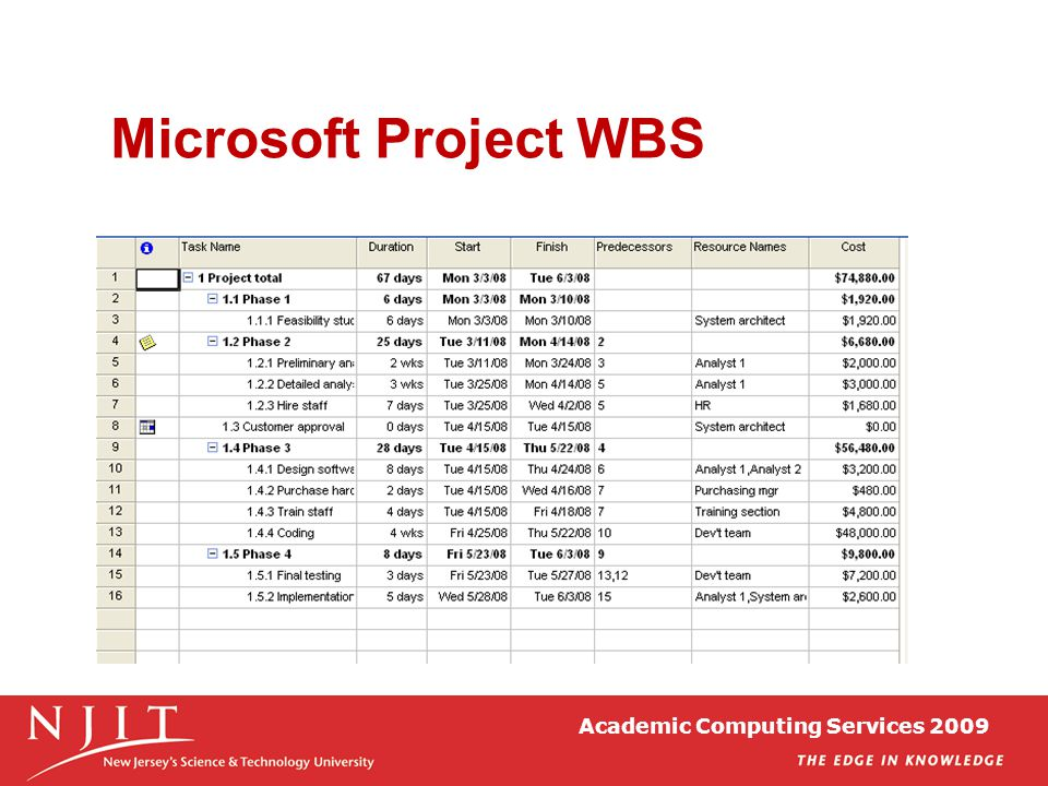 Microsoft Project WBS