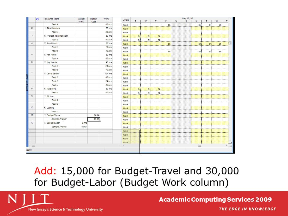 Academic Computing Services 2009 Add: 15,000 for Budget-Travel and 30,000 for Budget-Labor (Budget Work column)