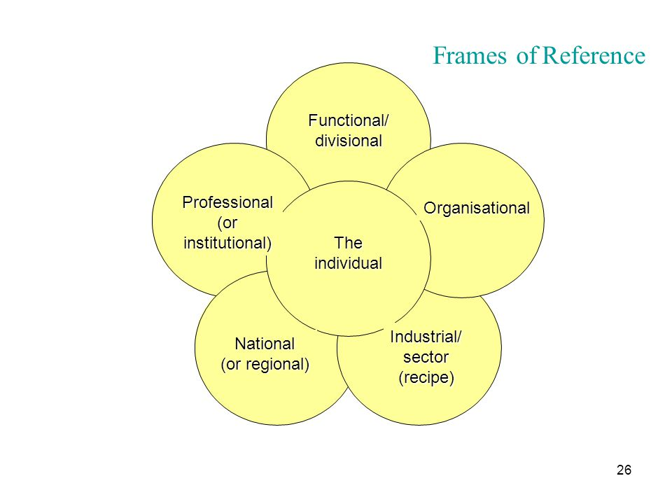 26 Functional/divisional Organisational Professional (or institutional) National (or regional) Industrial/sector(recipe) Theindividual Frames of Refer