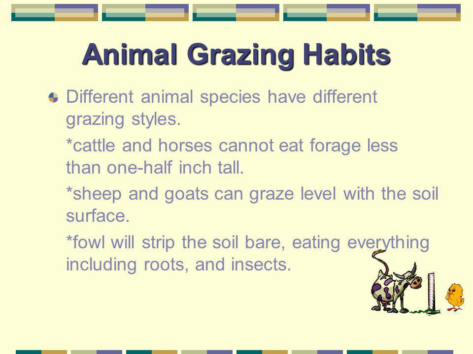 Now lets take a look at animal grazing habits.