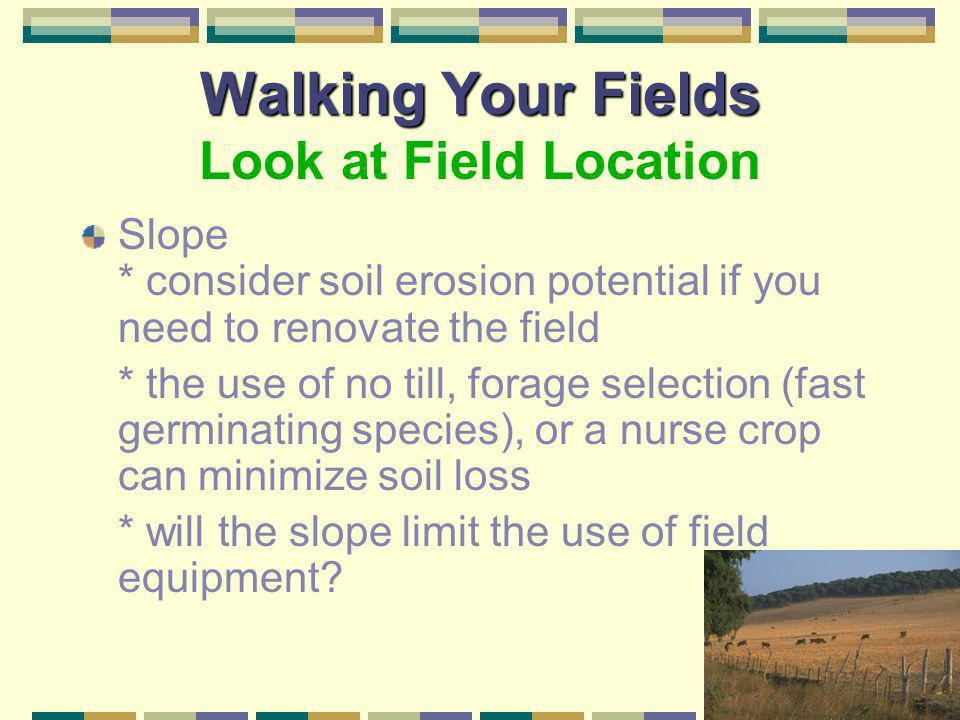 Walking Your Fields Walking Your Fields Look at Field Location Wooded *beware of grazing in, or around wooded areas. Some poisonous plants can be foun