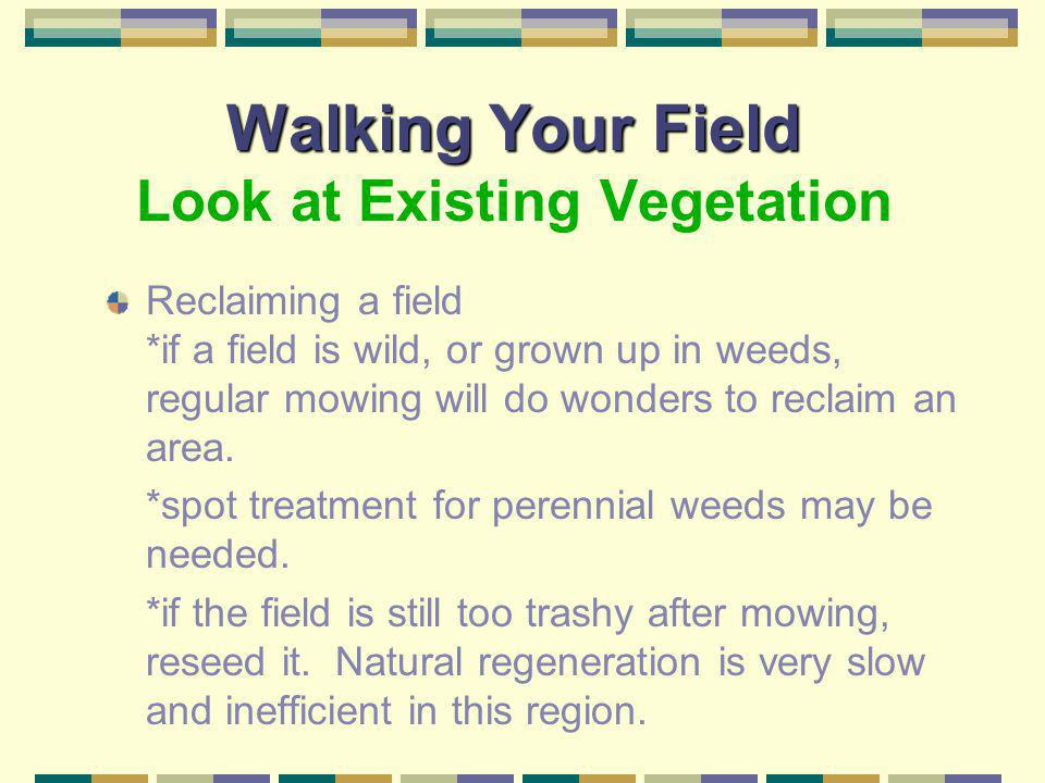 Walking Your Field Walking Your Field Look at Existing Vegetation Forage base *unless money is not a problem, try to work within the existing forage b