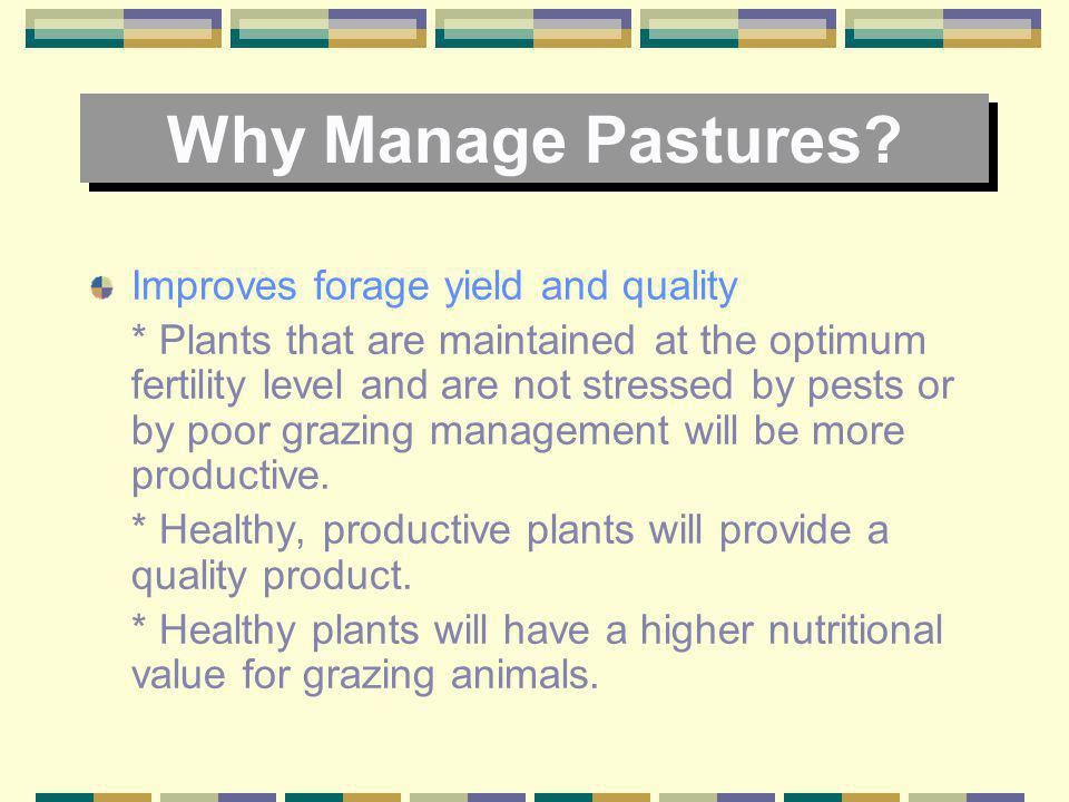 Why Manage Pastures? Reduces soil erosion * The above ground growth of pasture plants lessons the impact of rain drops on the soil surface and also sl