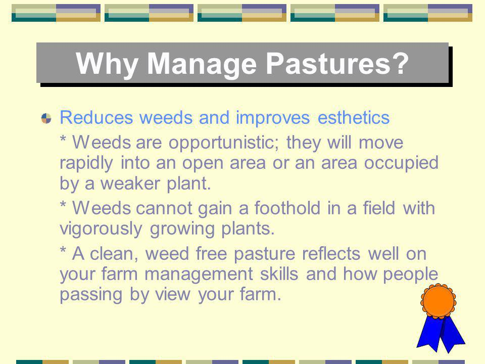 Why Manage Pastures? Improves forage yield and quality * Plants that are maintained at the optimum fertility level and are not stressed by pests or by