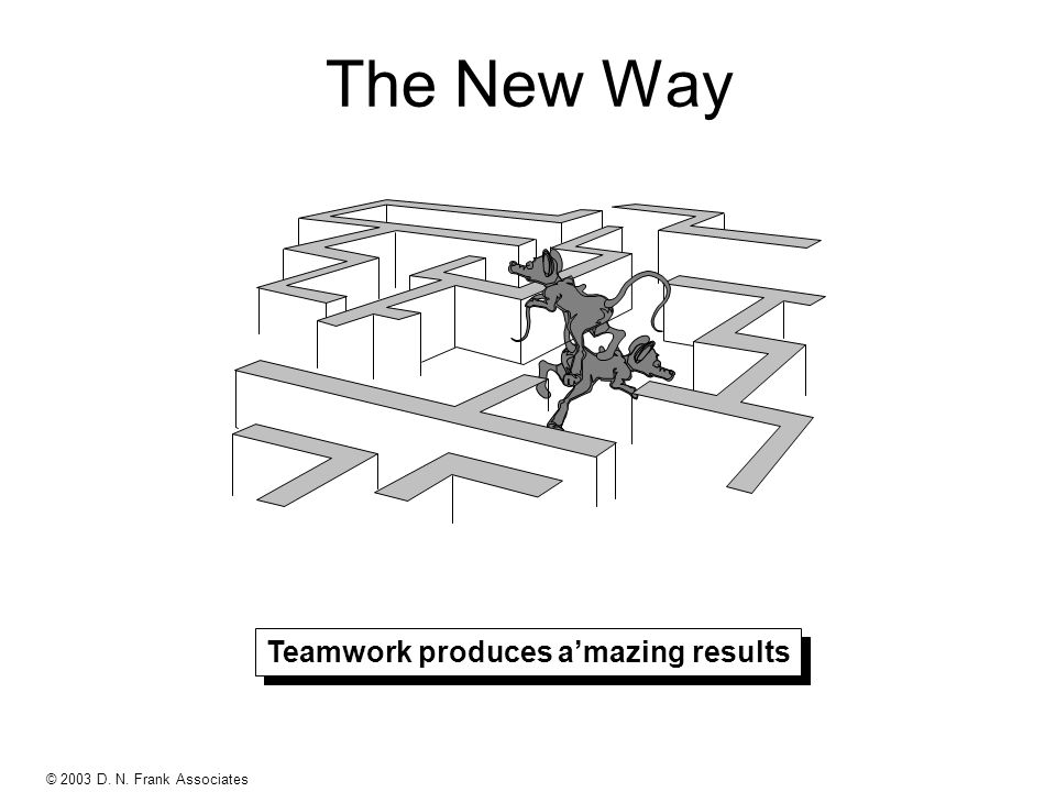 © 2003 D. N. Frank Associates PUR9505P - Rev B The New Way Teamwork produces amazing results