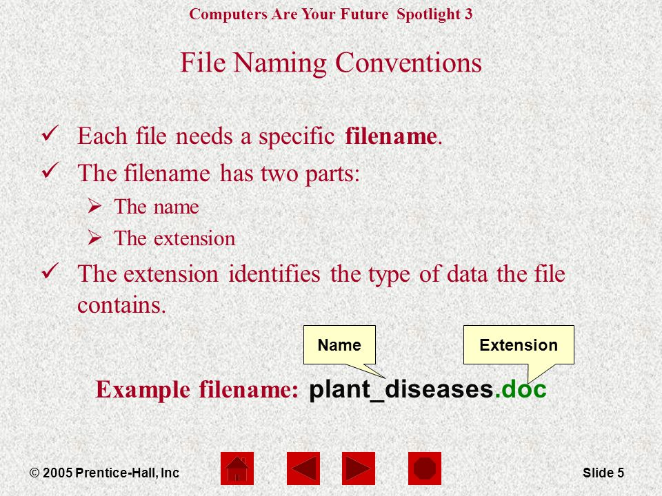 Computers Are Your Future Spotlight 3 © 2005 Prentice-Hall, IncSlide 6 Commonly Used Extensions ExtensionFile Type.exeProgram Application.docMicrosoft Word.xlsMicrosoft Excel.pptMicrosoft Power Point.mdbMicrosoft Access.pdfAdobe.txtSimple Text.htm or.htmlWeb Pages.rtfRich Text Format.jpeg or.jpgImage Format