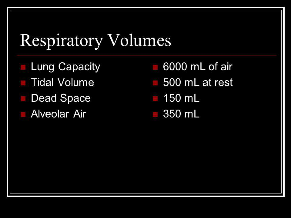 Respiratory Volumes Lung Capacity Tidal Volume Dead Space Alveolar Air 6000 mL of air 500 mL at rest 150 mL 350 mL