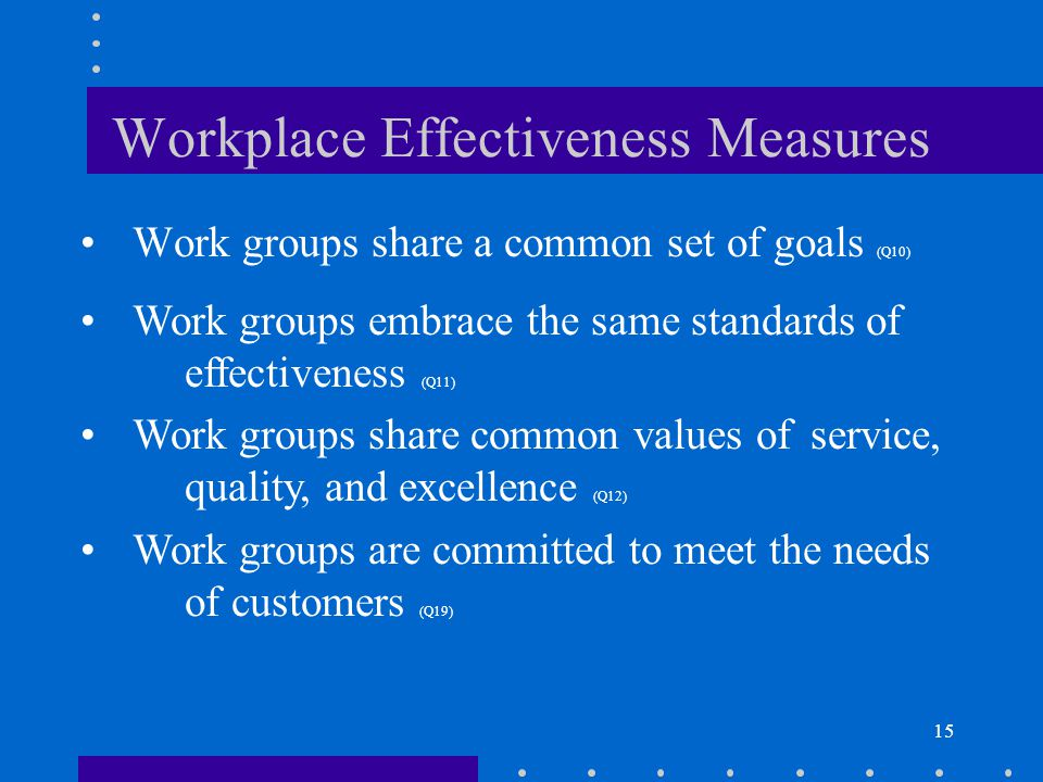 15 Workplace Effectiveness Measures Work groups share a common set of goals (Q10) Work groups embrace the same standards of effectiveness (Q11) Work g