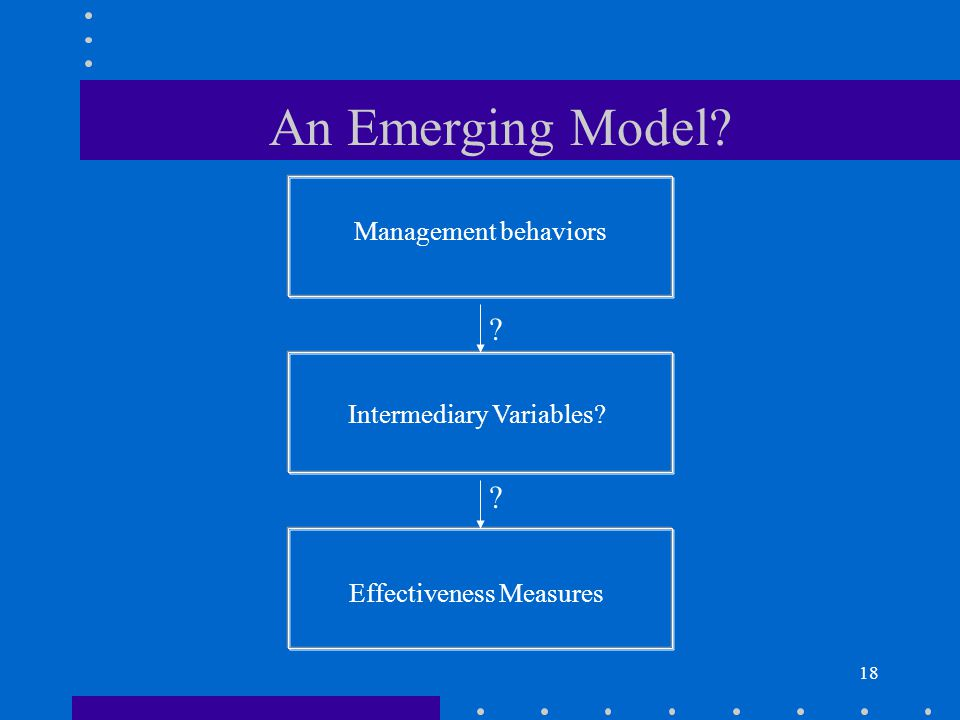 18 Management behaviors Intermediary Variables? Effectiveness Measures ? ? An Emerging Model?