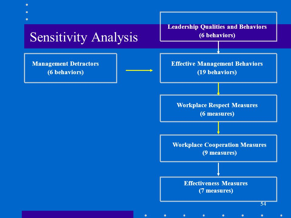 54 Workplace Respect Measures (6 measures) Workplace Cooperation Measures (9 measures) Effectiveness Measures (7 measures) Management Detractors (6 behaviors) Leadership Qualities and Behaviors (6 behaviors) Effective Management Behaviors (19 behaviors) Sensitivity Analysis