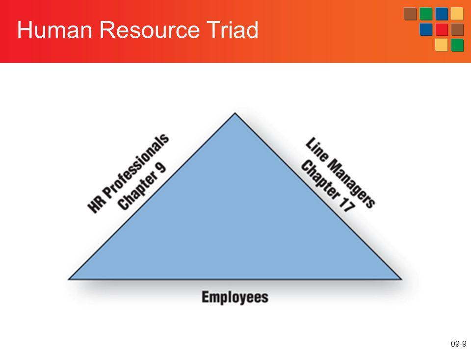 09-9 Human Resource Triad