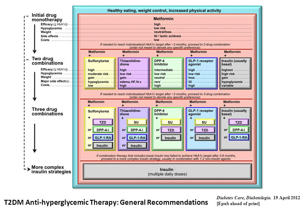 T2DM Anti-hyperglycemic Therapy: General Recommendations Diabetes Care, Diabetologia. 19 April 2012 [Epub ahead of print]