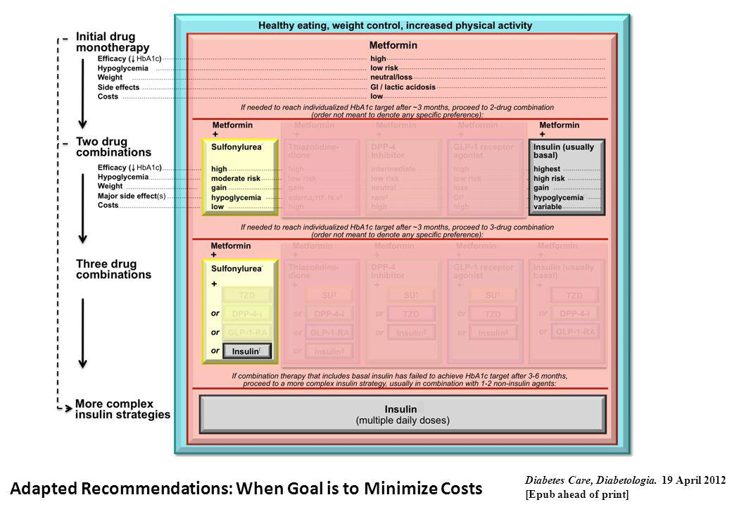 Adapted Recommendations: When Goal is to Minimize Costs Diabetes Care, Diabetologia. 19 April 2012 [Epub ahead of print]