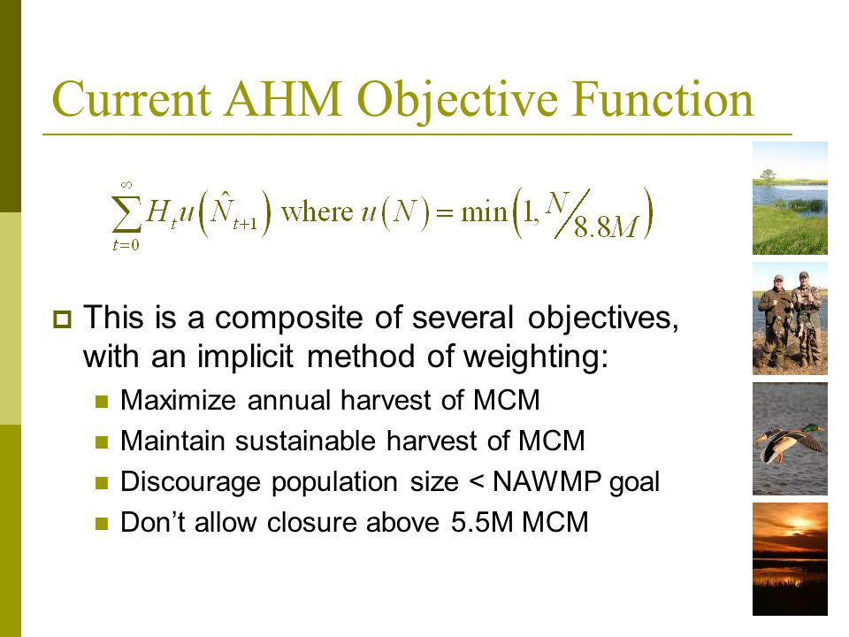 Current AHM Objective Function This is a composite of several objectives, with an implicit method of weighting: Maximize annual harvest of MCM Maintai
