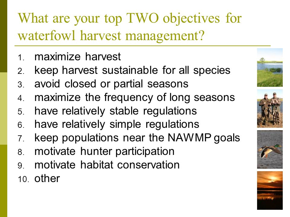 What are your top TWO objectives for waterfowl harvest management? 1. maximize harvest 2. keep harvest sustainable for all species 3. avoid closed or