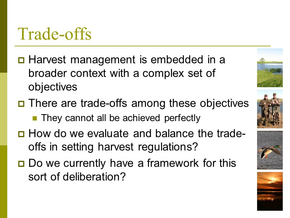 Trade-offs Harvest management is embedded in a broader context with a complex set of objectives There are trade-offs among these objectives They canno