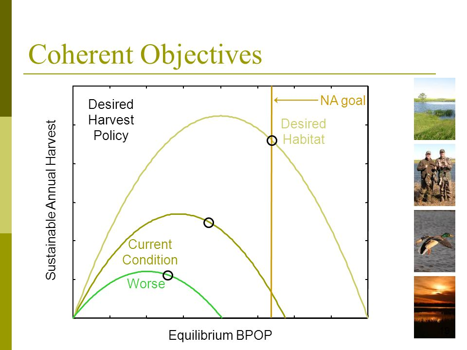 Equilibrium BPOP Sustainable Annual Harvest Desired Habitat NA goal 19 Desired Harvest Policy Coherent Objectives Current Condition Worse