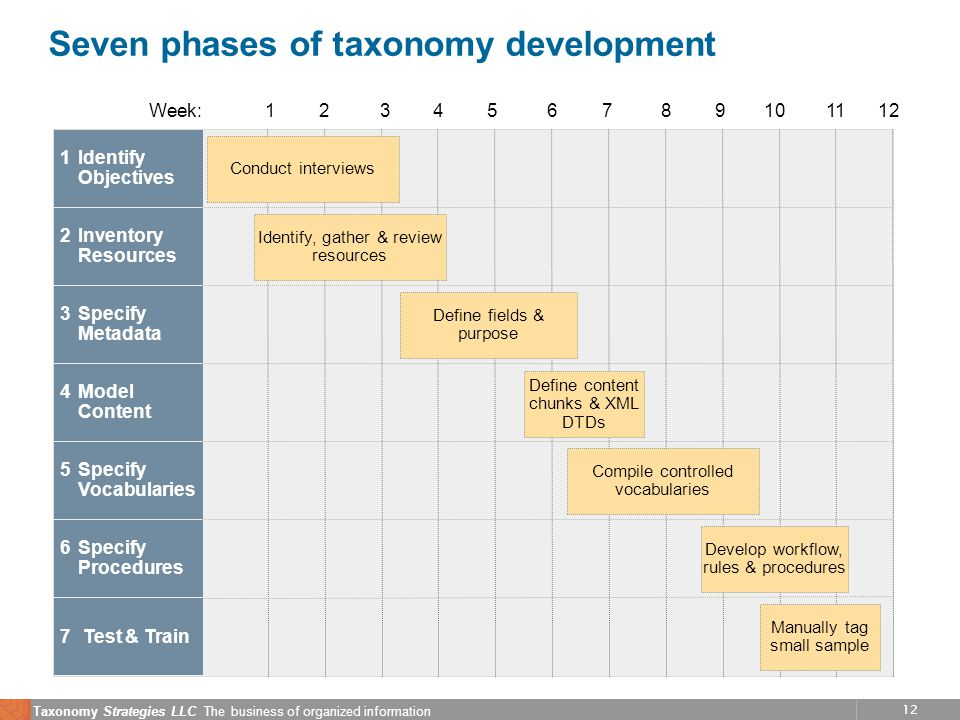 12 Taxonomy Strategies LLC The business of organized information Seven phases of taxonomy development Week:123456789101112 1Identify Objectives Conduct interviews 2Inventory Resources Identify, gather & review resources Define fields & purpose 3Specify Metadata 4Model Content Define content chunks & XML DTDs 5Specify Vocabularies Compile controlled vocabularies 6Specify Procedures Develop workflow, rules & procedures 7 Test & Train Manually tag small sample