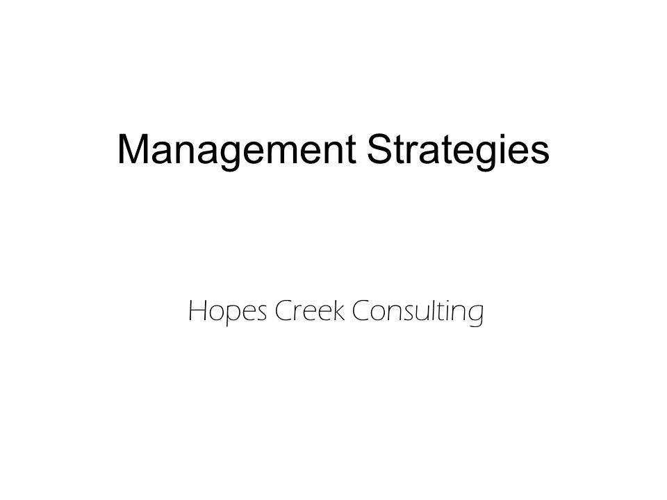 Management Strategies Hopes Creek Consulting