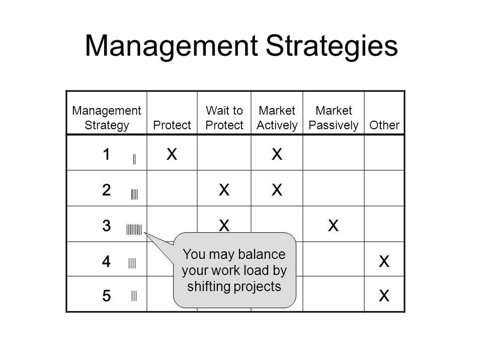 Management Strategies Management StrategyProtect Wait to Protect Market Actively Market PassivelyOther 1XX 2XX 3XX 4X 5X You may balance your work load by shifting projects