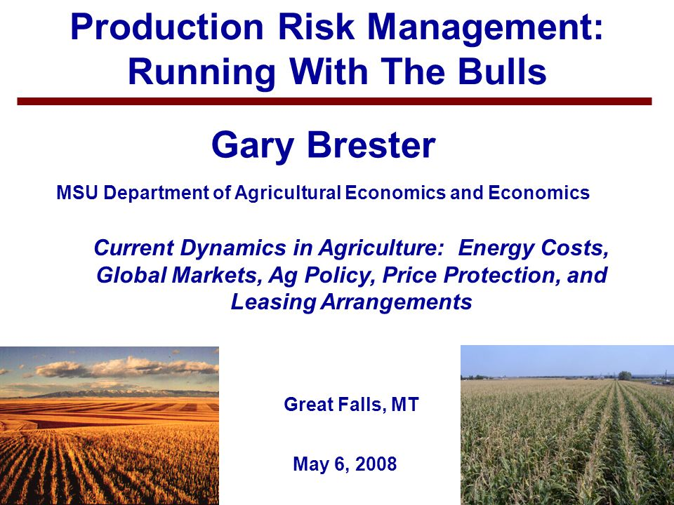 1 Production Risk Management: Running With The Bulls Gary Brester MSU Department of Agricultural Economics and Economics May 6, 2008 Current Dynamics
