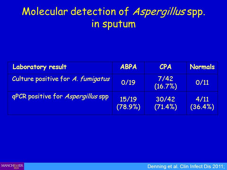 Molecular detection of Aspergillus spp. in sputum Denning et al. Clin Infect Dis 2011; Laboratory resultABPACPANormals Culture positive for A. fumigat