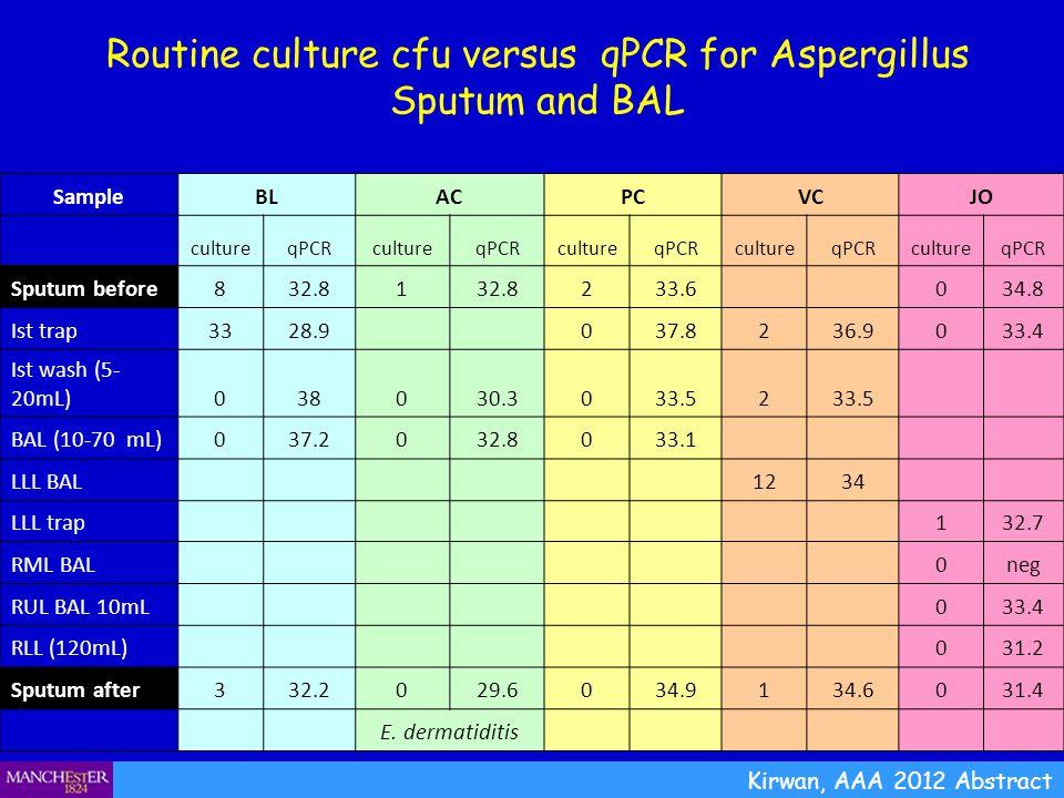 Routine culture cfu versus qPCR for Aspergillus Sputum and BAL Kirwan, AAA 2012 Abstract SampleBLACPCVCJO cultureqPCRcultureqPCRcultureqPCRcultureqPCR