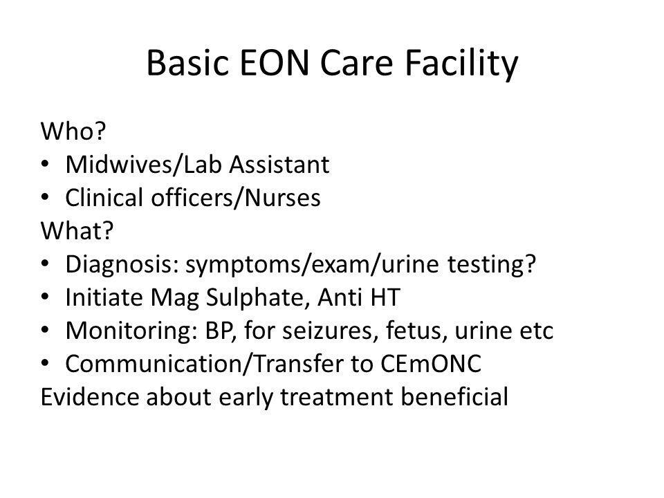 Basic EON Care Facility Who. Midwives/Lab Assistant Clinical officers/Nurses What.