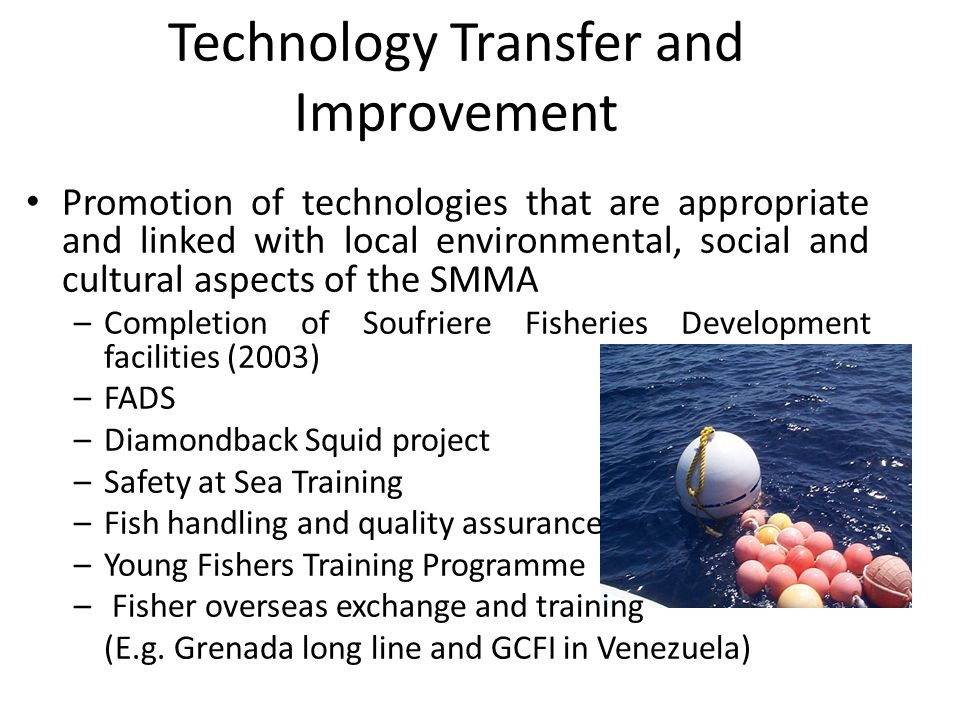 Technology Transfer and Improvement Promotion of technologies that are appropriate and linked with local environmental, social and cultural aspects of the SMMA –Completion of Soufriere Fisheries Development facilities (2003) –FADS –Diamondback Squid project –Safety at Sea Training –Fish handling and quality assurance –Young Fishers Training Programme – Fisher overseas exchange and training (E.g.