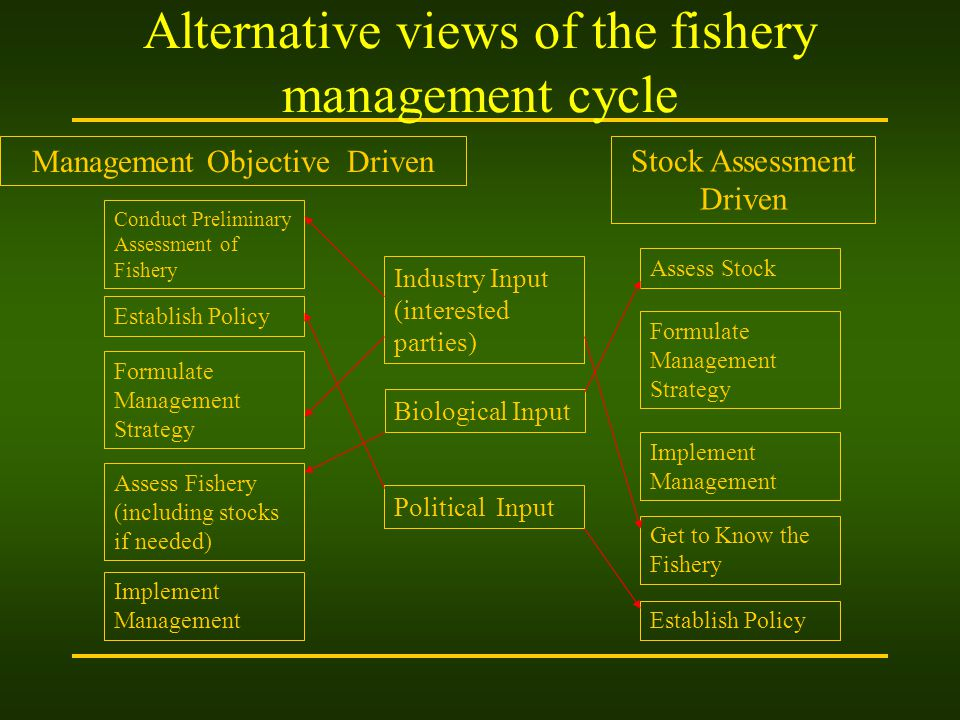 Alternative views of the fishery management cycle Industry Input (interested parties) Biological Input Political Input Management Objective Driven Stock Assessment Driven Conduct Preliminary Assessment of Fishery Establish Policy Formulate Management Strategy Assess Fishery (including stocks if needed) Implement Management Establish Policy Get to Know the Fishery Implement Management Formulate Management Strategy Assess Stock