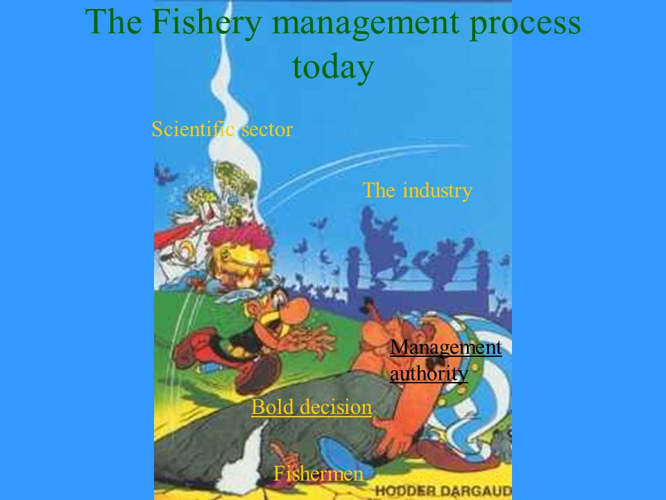 The Fishery management process today Bold decision The industry Scientific sector Management authority Fishermen